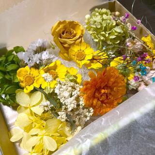 グリーンカラー薔薇お花ドライフラワー(ドライフラワー)
