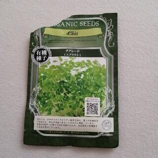 有機種子 チアシード スプラウト(野菜)