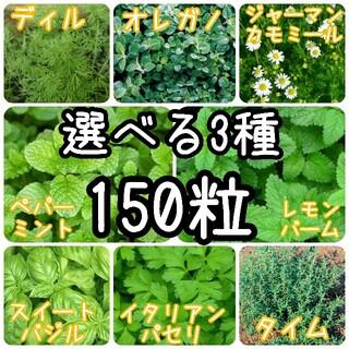 【ハーブの種】選べる3種 150粒 種子