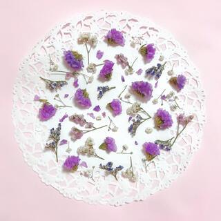 ラベンダー系 mixドライフラワー 花材 素材 押し花(ドライフラワー)