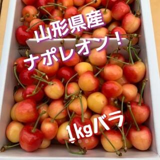 山形県産 さくらんぼ ナポレオン 1kg(フルーツ)