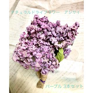 ナチュラルドライフラワー アジサイ 紫色 パープル 3本セット(ドライフラワー)