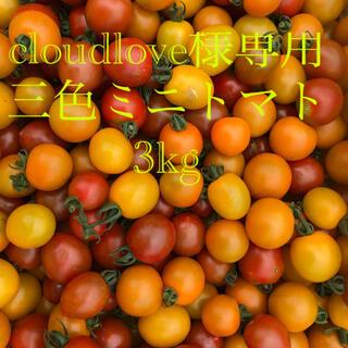 ミニトマト 3kg cloudlove様専用(野菜)