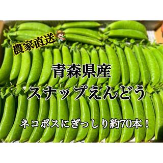 【採れたて】スナップえんどう 青森県産 農家直送(野菜)