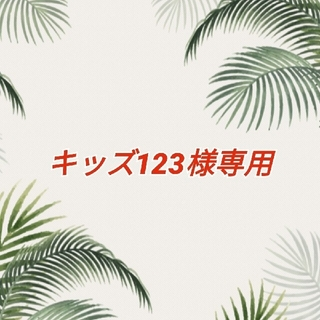 カラフルな ウクレレ用 ナイロン弦(その他)