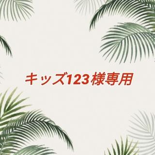 キッズ123様専用  カラフルな ウクレレ用 ナイロン弦(その他)