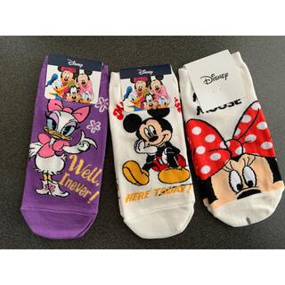 ディズニー(Disney)のディズニー 靴下  ミッキー ミニー デイジー(ソックス)