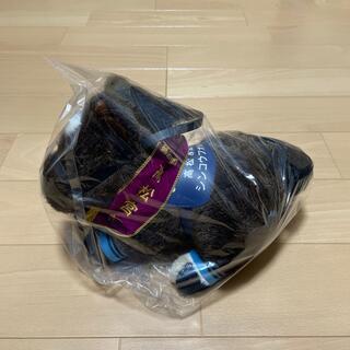 美品 新品同様 シンコウフォレスト 高松宮記念 アバンティー Sサイズ(ぬいぐるみ)