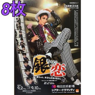 宝塚歌劇 花組「銀ちゃんの恋」〜銀ちゃん、今日も反省の色なし〜 フライヤー8枚(印刷物)