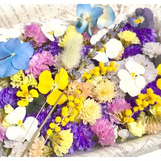 ドライフラワー花材セット❇︎No.198⁑スターチス❇︎ミモザ(ドライフラワー)