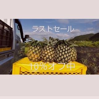 最後の大収穫祭!沖縄県西表島産島パイン(ハワイ種) 約4㎏(4~6玉)(フルーツ)