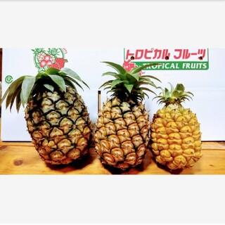 西表島産パイナップル3種おまかせセット☆約4㎏(5~8玉)(フルーツ)