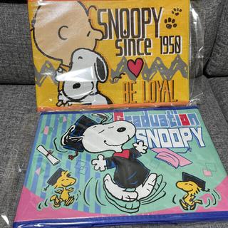 スヌーピー(SNOOPY)の不織布 収納BOX スヌーピー  2種セット(ケース/ボックス)