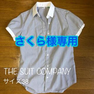 スーツカンパニー(THE SUIT COMPANY)のスーツカンパニー 半袖シャツ レディース ボーダー(シャツ/ブラウス(半袖/袖なし))