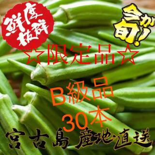 訳あり 沖縄県産 オクラ  30本(野菜)