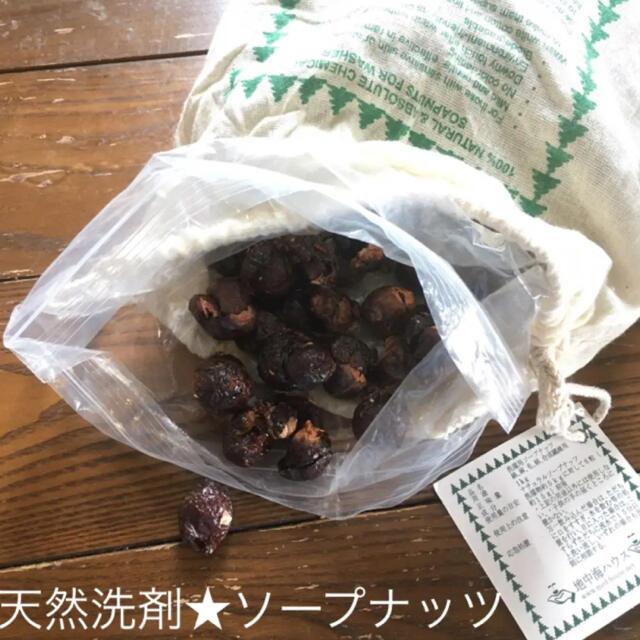天然木の実の洗剤「ソープナッツ」 90g キッズ/ベビー/マタニティの洗浄/衛生用品(おむつ/肌着用洗剤)の商品写真