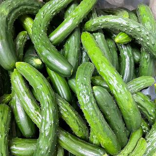 きゅうり 3K 熊本県産 送料込み(野菜)
