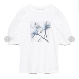 フレイアイディー(FRAY I.D)の美品 セルフォード Albert Koetsierボリューム袖Tシャツ(Tシャツ(半袖/袖なし))