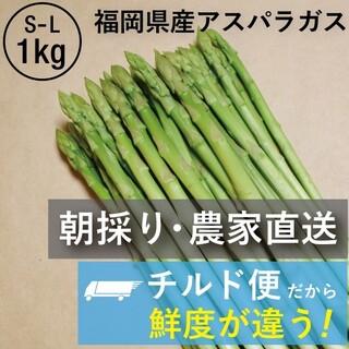 【チルド便】 農家直送 アスパラガス S~L 1㎏ 朝採り 期間・数量限定(野菜)
