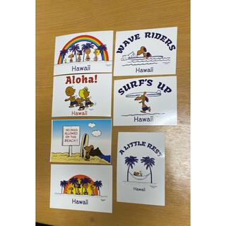 スヌーピー(SNOOPY)の日焼けスヌーピー ポストカード(写真/ポストカード)