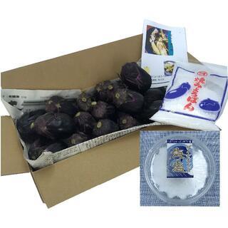 【クール便】「梨ナス」と「ダイヤモンド海塩」で 至高の 漬物 にチャレンジ!(野菜)