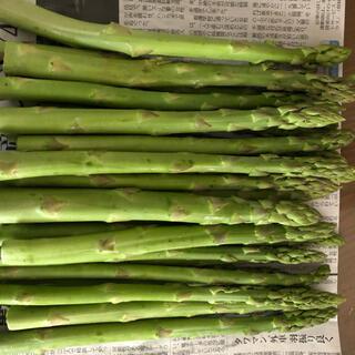 アスパラ1.2kg (野菜)