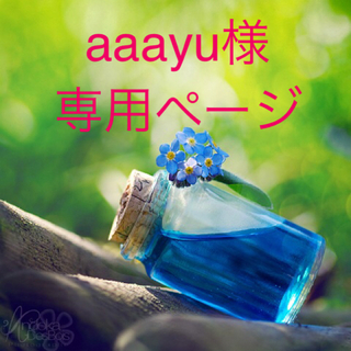 aaayu様専用ページ(ドライフラワー)