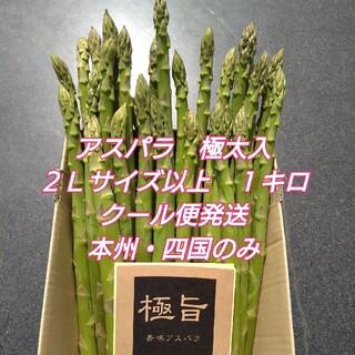 栃木県産アスパラガス 極太入り 2Lサイズ以上 1キロ(野菜)