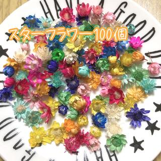 くまぐち様専用♡スターフラワー100個 ヘッドのみ ハーバリウム花材(ドライフラワー)