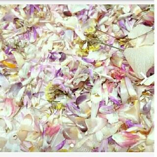 約2.3g ドライフラワー 花材 材料パーツ 花びら 花がら(各種パーツ)