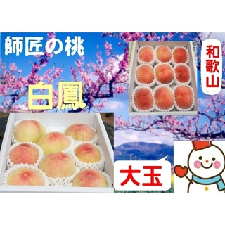 師匠の桃♥和歌山の大玉白鳳中箱♥健康農家雪だるまから(フルーツ)