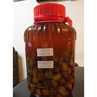 梅の実と梅ジュース(2.350キロ)たらちゃん様専用です(フルーツ)