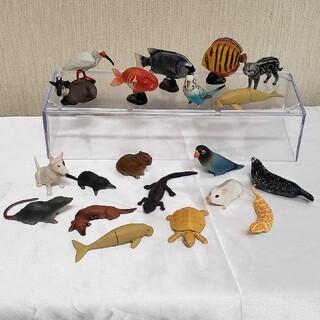 カイヨウドウ(海洋堂)のチョコエッグ 日本の動物 シークレット ツチノコ  フィギュア 食玩(フィギュア)