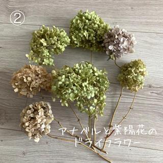 ◯アナベルと紫陽花のドライフラワー◯7本セット*自然素材*(ドライフラワー)