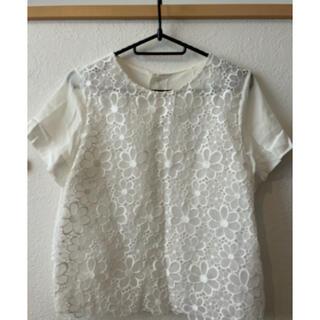 イエナ(IENA)のIENAカットワークホワイトTシャツ(Tシャツ/カットソー(半袖/袖なし))