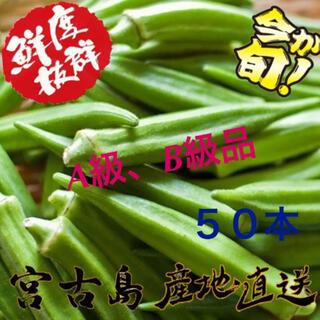 訳あり 沖縄県産 オクラ 50本(野菜)