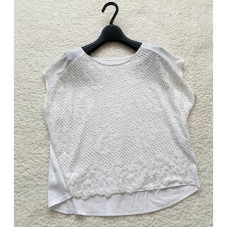 グレースコンチネンタル(GRACE CONTINENTAL)のグレースコンチネンタル レースカットソー トップス 36(Tシャツ(半袖/袖なし))