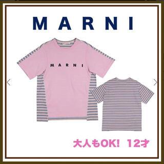 マルニ(Marni)のTシャツ(その他)