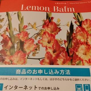 レモンバーム カタログギフト(その他)
