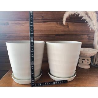 新品 プランター ホワイトベージュ 丸 円 プラスチック 軽量 観葉植物 寄植え(プランター)
