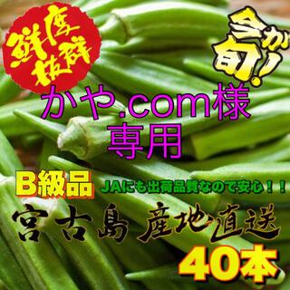 ☆かや.com様専用☆訳あり 宮古島産 オクラ 40本(野菜)