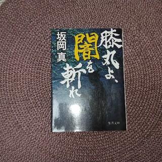 膝丸よ、闇を斬れ(文学/小説)