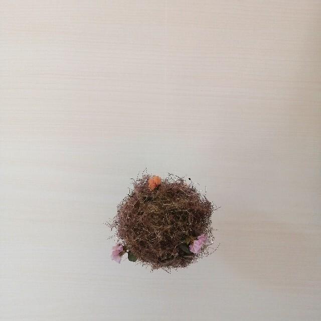 スモークツリーボール② ハンドメイドのフラワー/ガーデン(ドライフラワー)の商品写真