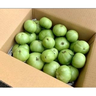 産地直送 減農薬 桃太郎 グリーントマト 摘果トマト 約3kg(野菜)