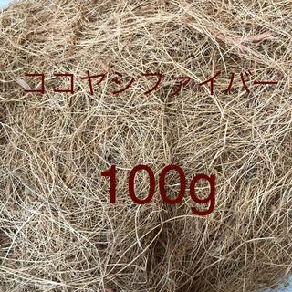 ココヤシファイバー100g(その他)