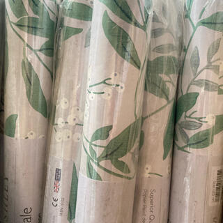 LAURA ASHLEY - グリーンデール/グレーグリーン  ローラアシュリー-壁紙 1ロールから