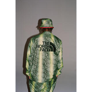 Supreme - 18SS SUPREME x THE NORTH FACE Snakeskin