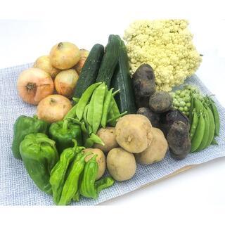 【クール便】[無農薬]NO(ノー)-ネオニコ 家族に食べさせたい野菜 新潟 産直(野菜)