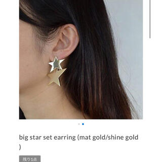 アッシュペーフランス(H.P.FRANCE)の美品 MAYU Jewerly big star set earring(イヤリング)