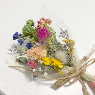 ドライフラワー ミニスワッグ 101 ブーケ 花束 インテリア(ドライフラワー)